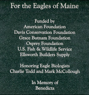 Eagle Recovery Dedication