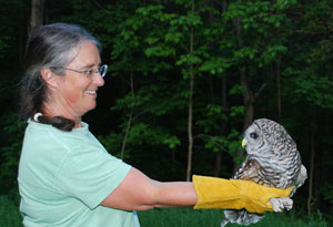 Jane releases Barred Owl
