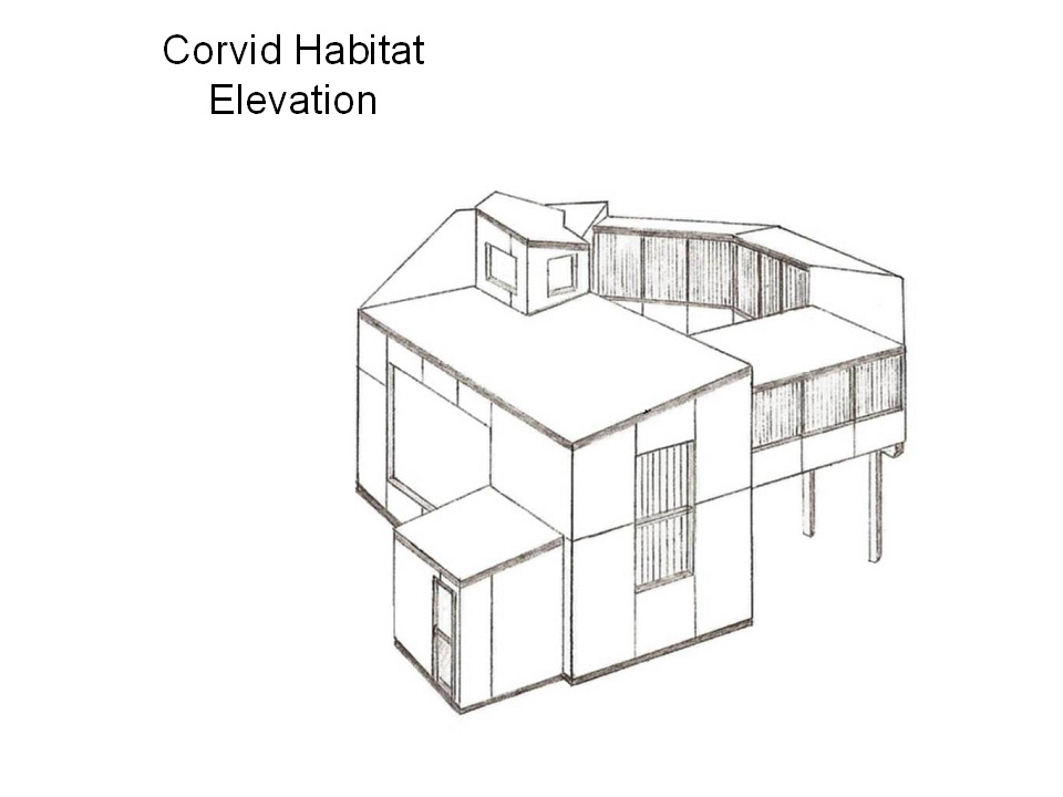 Corvid Habitat Elevation
